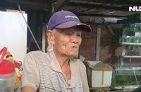 Cụ ông 83 tuổi với gần 70 năm chơi cá lia thia