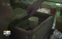 Thâm nhập các điểm đá cá ăn tiền tại TP. HCM