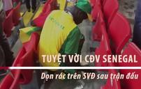 Tuyệt vời CĐV Senegal - Ở lại dọn rác SVĐ sau trận đấu