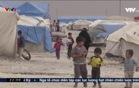 Mối nguy khi 800 đối tượng liên hệ với IS đã bỏ trốn
