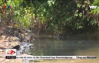 Nguồn nước sạch Hà Nội bị ô nhiễm do dầu thải