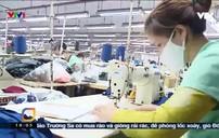 Dự báo mức thưởng Tết Kỷ Hợi trong khối sản xuất