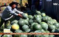 Trung Quốc siết chặt việc nhập khẩu nông sản