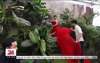 Chụp ảnh cưới - Ngành công nghiệp hái bộn tiền tại Trung Quốc
