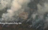 Rừng Amazon cháy lớn