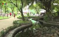 """Nhiều công viên cây xanh đang bị """"xẻ thịt"""""""
