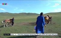 Cuộc sống du mục ở Mông Cổ
