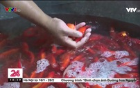 Chợ cá lớn nhất Hà Nội nhộn nhịp dịp lễ ông Công ông Táo
