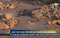 Khai thác vàng trái phép gây ô nhiễm nước sông Đakrông
