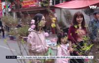 Chợ hoa Hà Nội ngày cuối năm