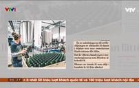 Bia rượu không cồn phổ biến ở châu Âu