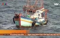 Hàng trăm lượt tàu cá vi phạm đánh bắt ở vùng biển nước ngoài trong 1 tháng
