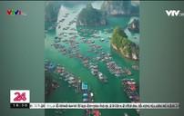 Leonardo DiCaprio kêu gọi giảm rác thải trên Vịnh Lan Hạ