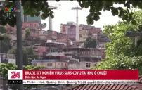 5.000 cư dân khu ổ chuột Brazil được xét nghiệm SARS-CoV-2