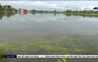 Giúp người dân Quảng Trị khắc phục hậu quả sau bão số 5