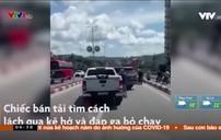 Clip: Ô tô tạt đầu nhau trên cầu Bãi Cháy