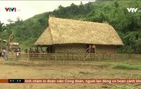 Người Xê Đăng dựng nhà Rông truyền thống đón Tết