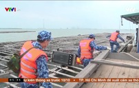 Ngăn ngừa ngư dân tiếp xúc tàu nước ngoài