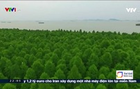 Luật Bảo vệ sông Dương Tử (Trung Quốc) chính thức có hiệu lực