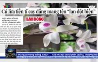 """NHNN tỉnh Hòa Bình đề nghị """"siết"""" cho vay trước cơn sốt lan đột biến tiền tỷ"""