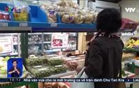 Vải thiều Việt Nam chinh phục thị trường Pháp