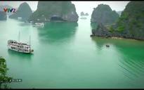 Việt Nam - Đất nước - Con người: Nhà vườn quê mẹ