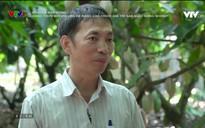 Chuyện nhà nông: Nông thôn mới với vấn đề nâng cao chuỗi giá trị sản xuất nông nghiệp