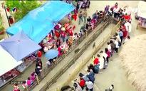 S - Việt Nam: Lễ hội hoa đỗ quyên