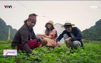 S - Việt Nam: Việt Hải ngôi làng giữa núi giữa biển