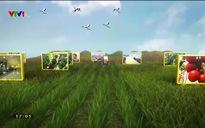 Chuyện nhà nông: Chuyện thuê đất làm nông nghiệp