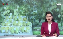 Bản tin tiếng Việt 12h VTV4 - 17/5/2019