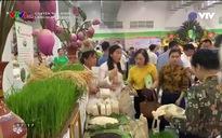 Chuyện nhà nông: Làng hữu cơ Đồng Phú