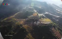 Nhịp đập Việt Nam: Thanh Lương - Ngôi chùa mang hơi thở biển