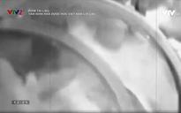 Phim tài liệu: Tầm nhìn nhà dược học Việt Nam lỗi lạc