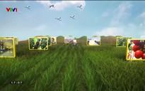 Chuyện nhà nông: Đồng hành cùng người nông dân