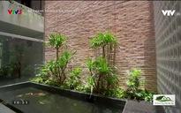 Nét xanh trong kiến trúc nay: Không gian mở cho nhà ở đô thị