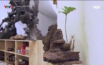 Hạnh phúc là gì?: Nguyễn Thanh Hiền - Hạnh phúc của người tái sinh gốc cây chết