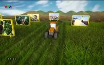 Chuyện nhà nông: Hiệu quả từ các mô hình liên kết chuỗi