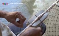 Chuyện biển chuyện người: Làng cổ vật