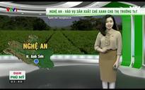 Bản tin thời tiết nông vụ - 11/12/2017