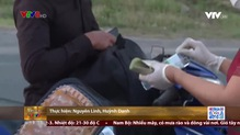 Thời sự 18h VTV8 - 31/7/2021