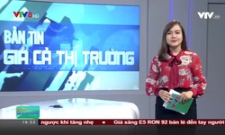 Bản tin giá cả thị trường - 22/10/2018