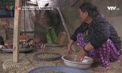 Chuyện biển chuyện người: Những người phụ nữ khiêng cá