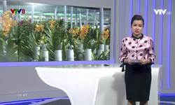 Kết nối miền Trung - 21/11/2018