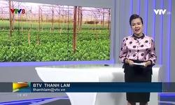 Bản tin 18h VTV8 - 21/11/2018