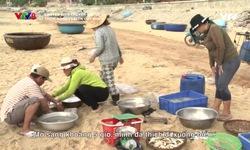 Chuyện biển chuyện người: Thơm nồng vị biển Quy Nhơn