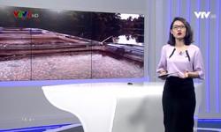 Kết nối miền Trung - 06/12/2018