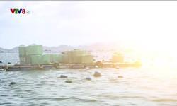 Kết nối miền Trung - 07/12/2018