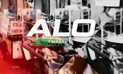 Alo8!8!8! - 21/7/2018
