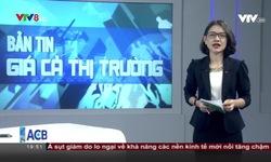Bản tin giá cả thị trường - 13/9/2018